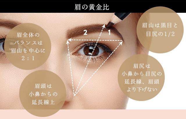 眉の黄金比
